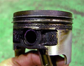 DSCN3498.JPG