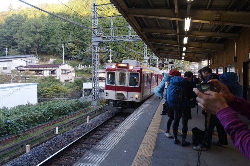 oosugi102.JPG